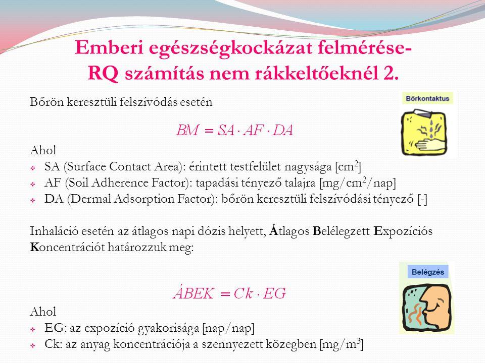 Emberi egészségkockázat felmérése- RQ számítás nem rákkeltőeknél 2.