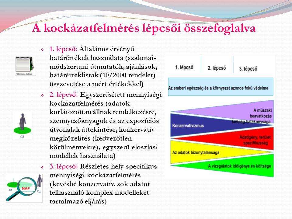 A kockázatfelmérés lépcsői összefoglalva