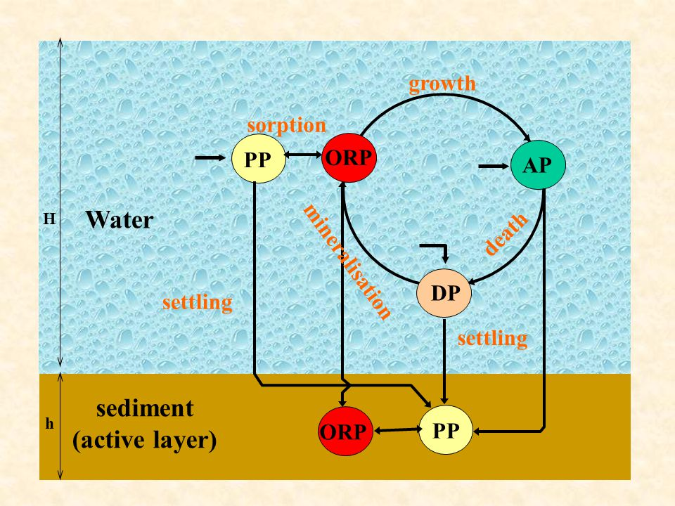 Water sediment (active layer)