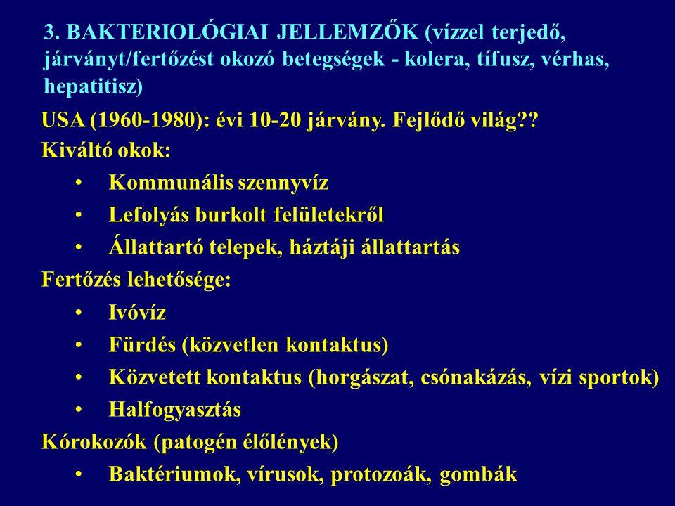 3. BAKTERIOLÓGIAI JELLEMZŐK (vízzel terjedő, járványt/fertőzést okozó betegségek - kolera, tífusz, vérhas, hepatitisz)