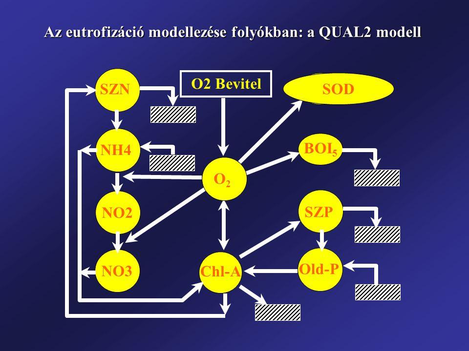 Az eutrofizáció modellezése folyókban: a QUAL2 modell
