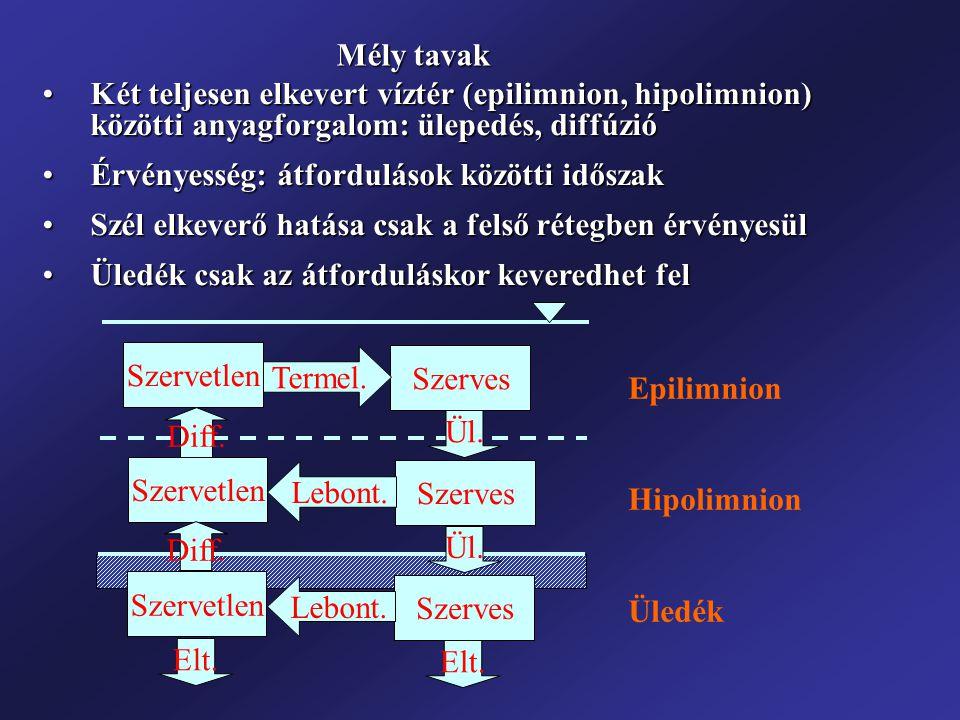 Mély tavak Két teljesen elkevert víztér (epilimnion, hipolimnion) közötti anyagforgalom: ülepedés, diffúzió.