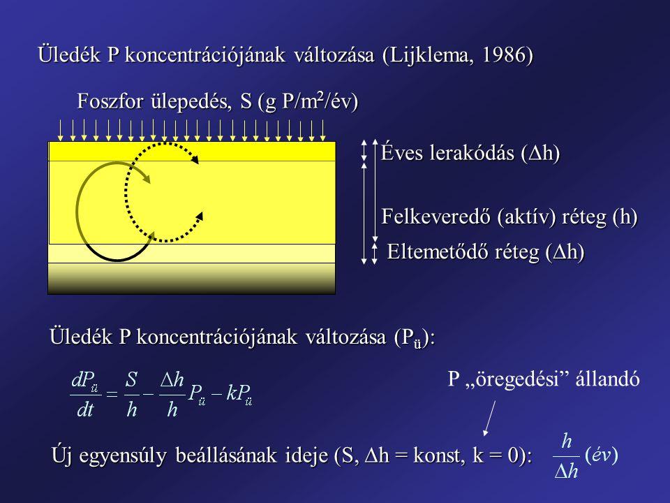 Üledék P koncentrációjának változása (Lijklema, 1986)