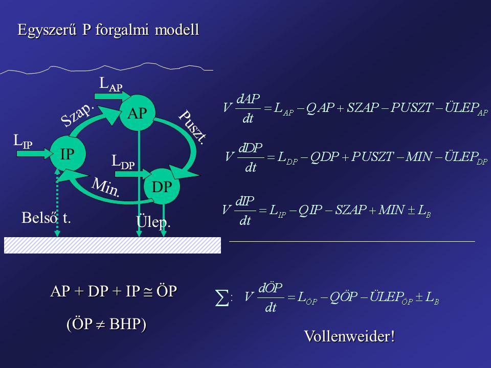 Egyszerű P forgalmi modell
