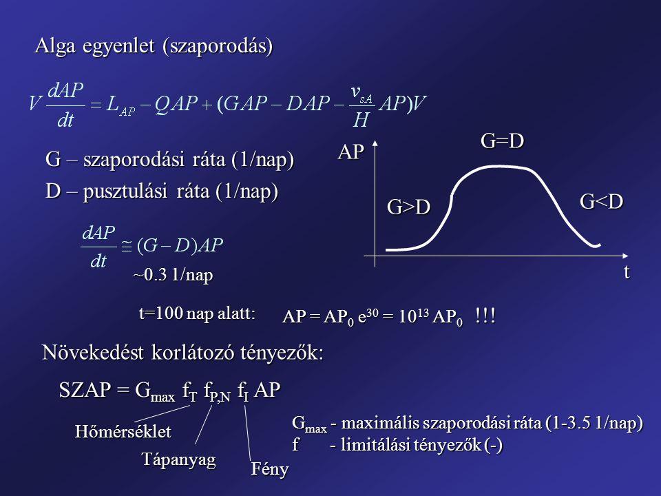 Alga egyenlet (szaporodás)