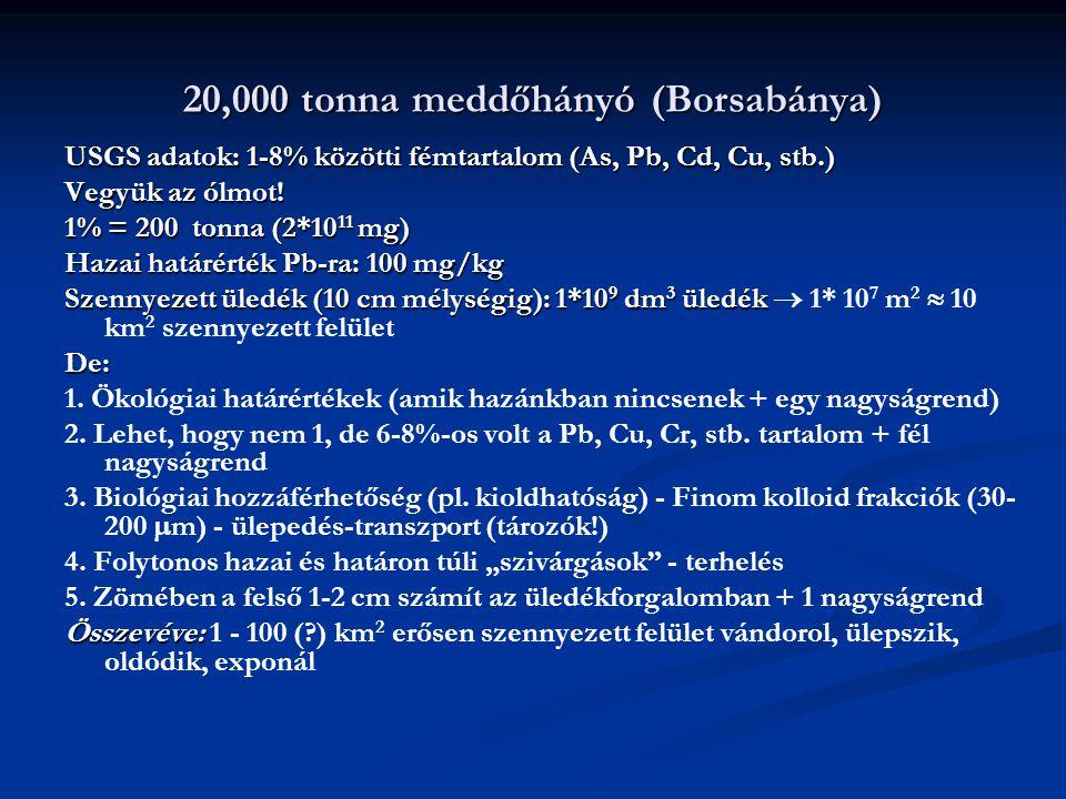 20,000 tonna meddőhányó (Borsabánya)