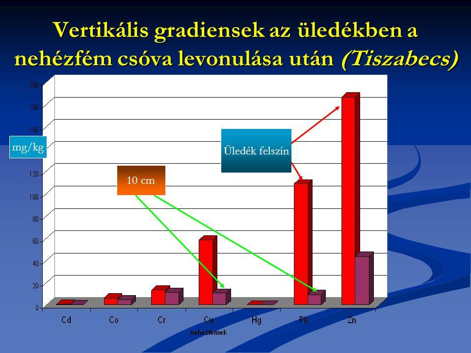 Vertikális gradiensek az üledékben a nehézfém csóva levonulása után (Tiszabecs)
