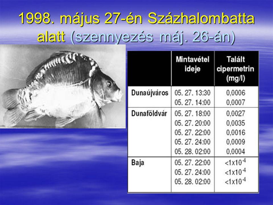 1998. május 27-én Százhalombatta alatt (szennyezés máj. 26-án)