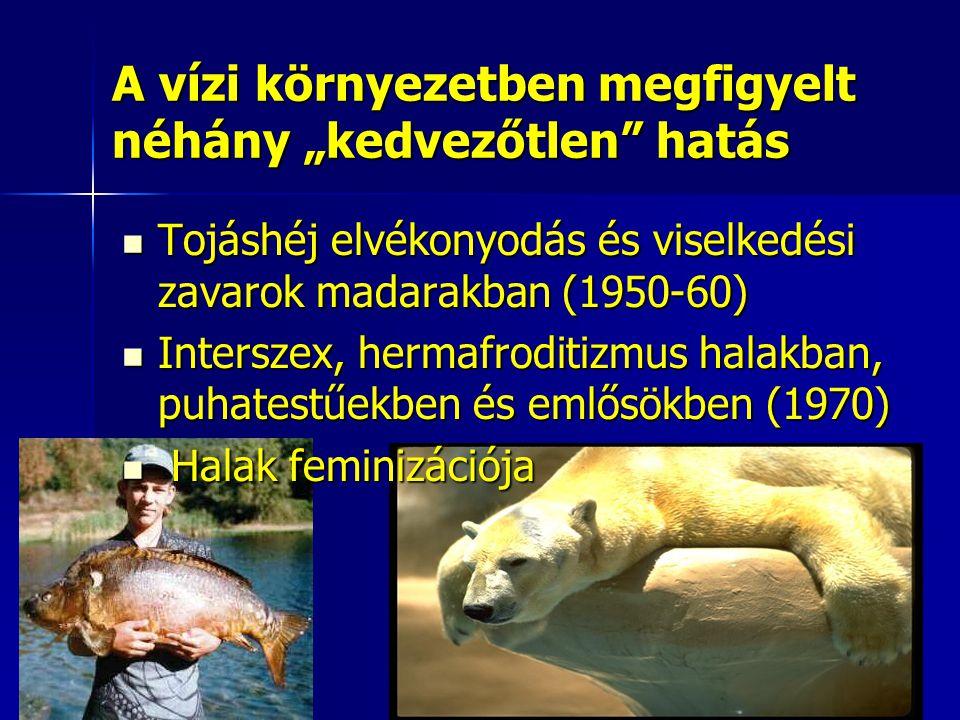 """A vízi környezetben megfigyelt néhány """"kedvezőtlen hatás"""