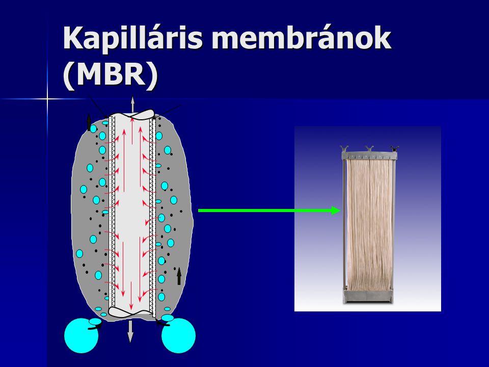Kapilláris membránok (MBR)