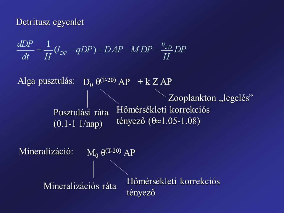 """Detritusz egyenlet Alga pusztulás: D0 (T-20) AP. + k Z AP. Zooplankton """"legelés Hőmérsékleti korrekciós tényező (1.05-1.08)"""