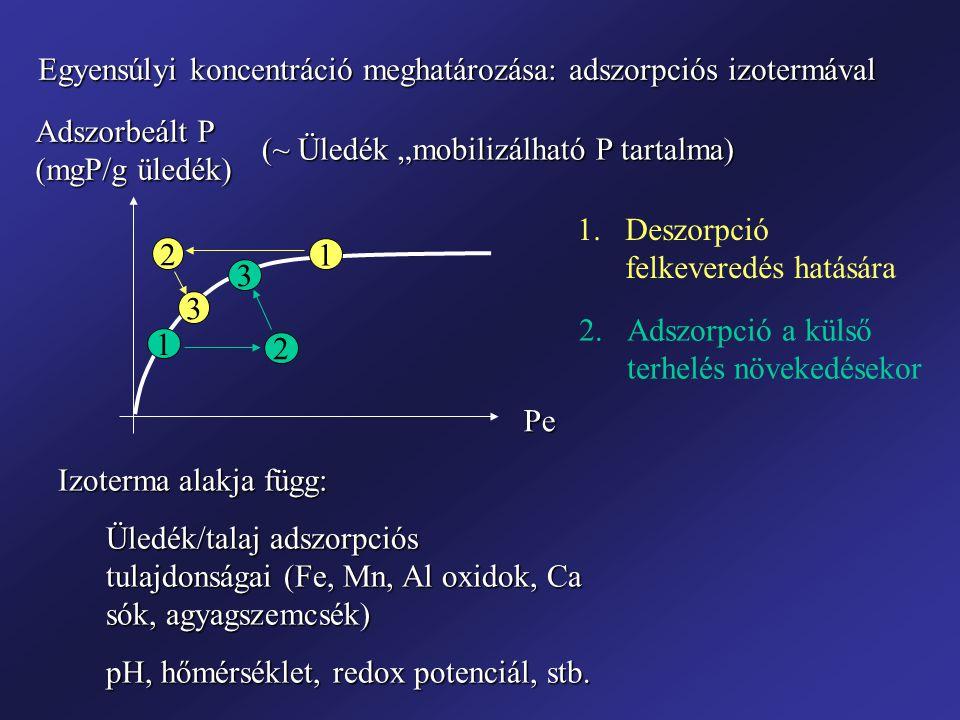 Egyensúlyi koncentráció meghatározása: adszorpciós izotermával