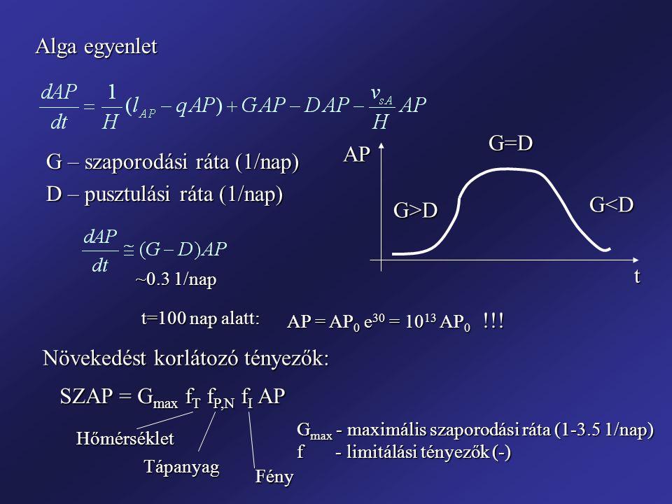 G – szaporodási ráta (1/nap) D – pusztulási ráta (1/nap) G<D G>D