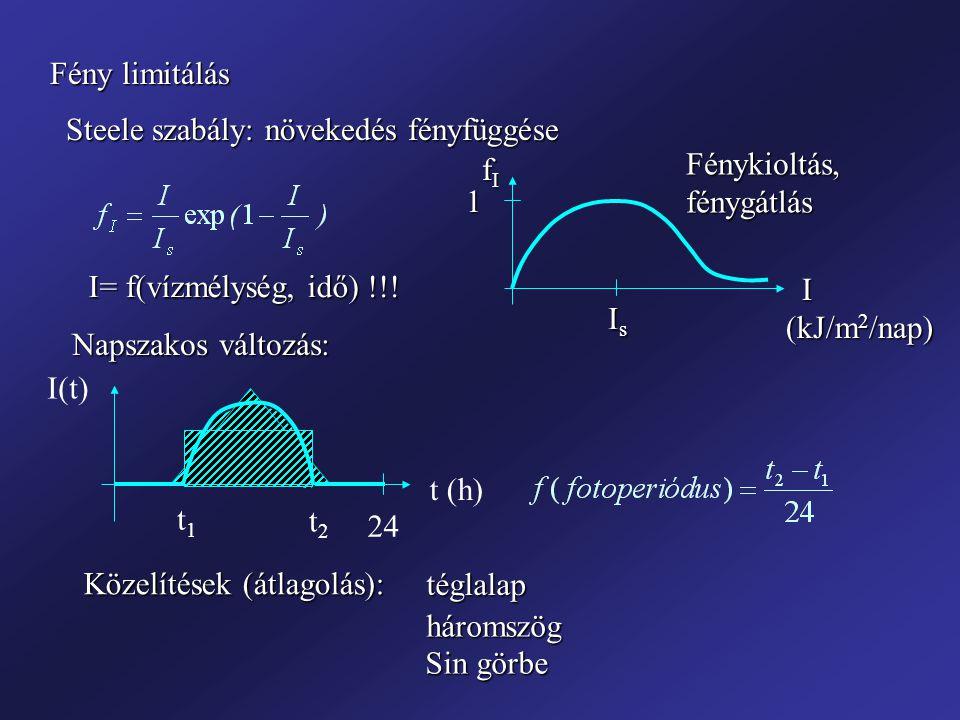 Fény limitálás Steele szabály: növekedés fényfüggése. fI. Fénykioltás, fénygátlás. 1. I= f(vízmélység, idő) !!!