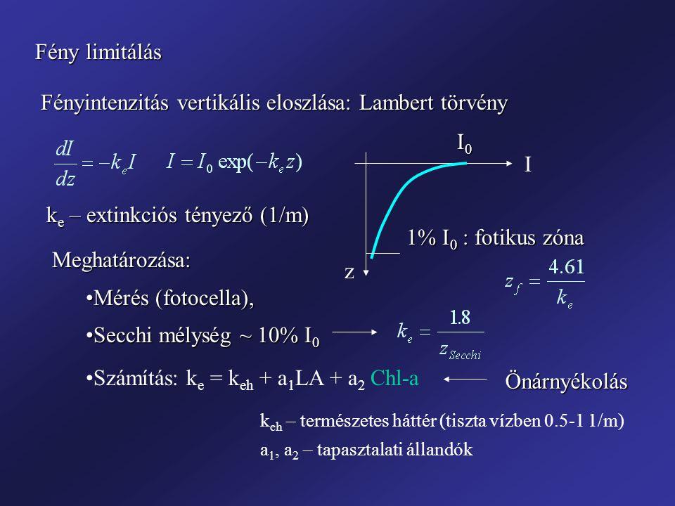 Fényintenzitás vertikális eloszlása: Lambert törvény