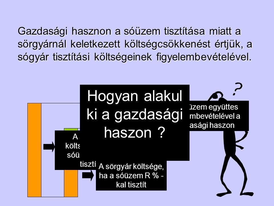 Hogyan alakul ki a gazdasági haszon