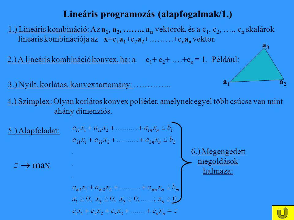 Lineáris programozás (alapfogalmak/1.)