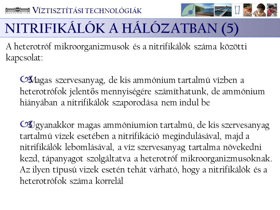 NITRIFIKÁLÓK A HÁLÓZATBAN (5)