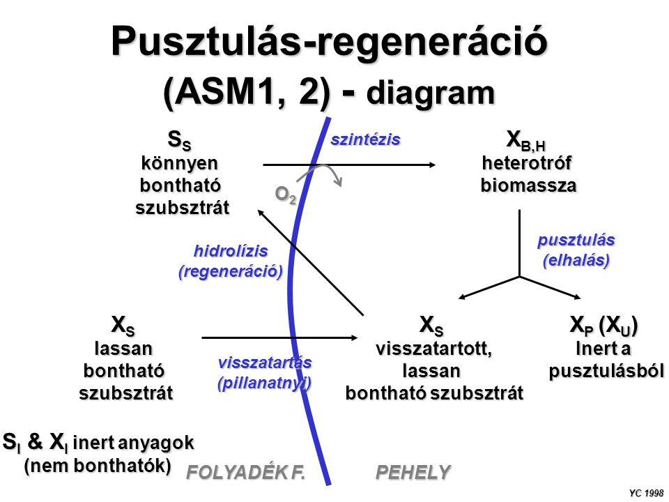 Pusztulás-regeneráció (ASM1, 2) - diagram