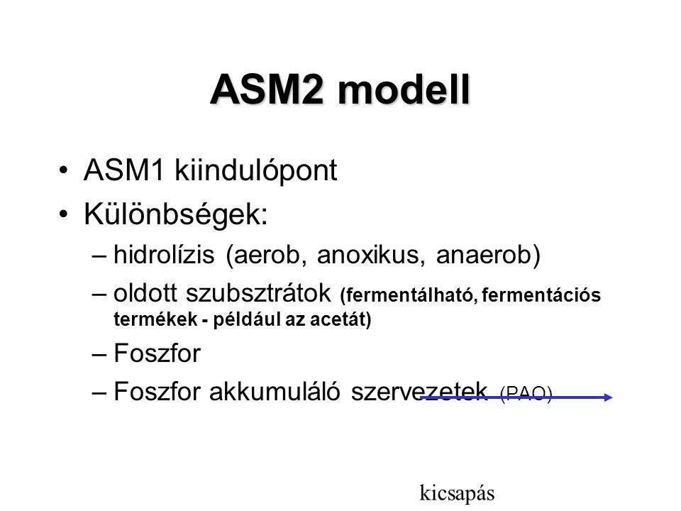 ASM2 modell ASM1 kiindulópont Különbségek: