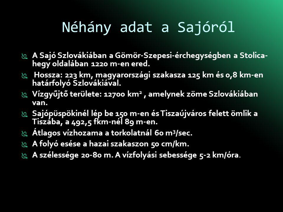 Néhány adat a Sajóról A Sajó Szlovákiában a Gömör-Szepesi-érchegységben a Stolica- hegy oldalában 1220 m-en ered.