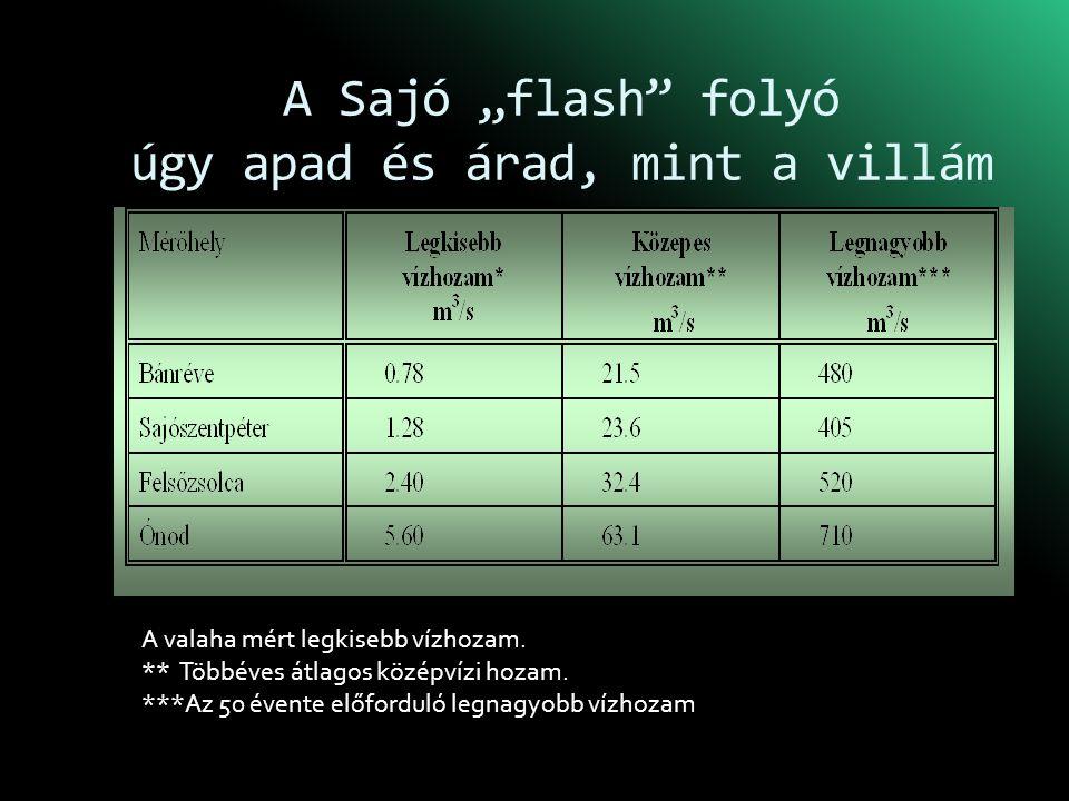 """A Sajó """"flash folyó úgy apad és árad, mint a villám"""