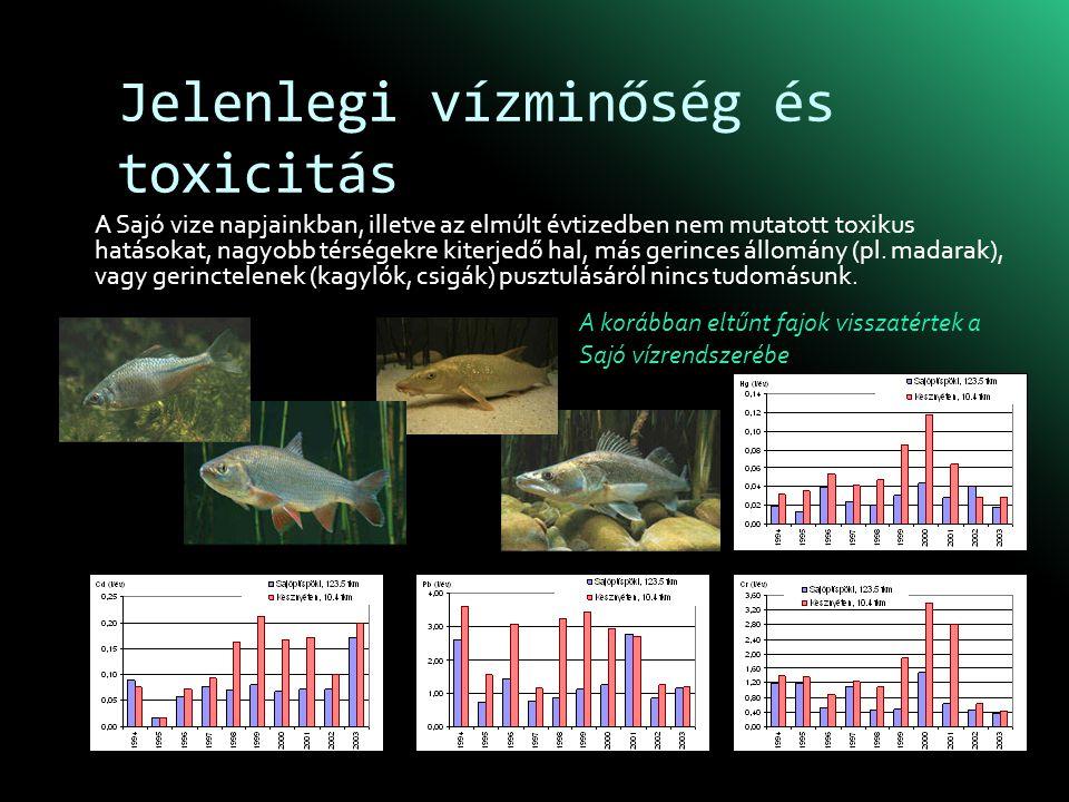 Jelenlegi vízminőség és toxicitás