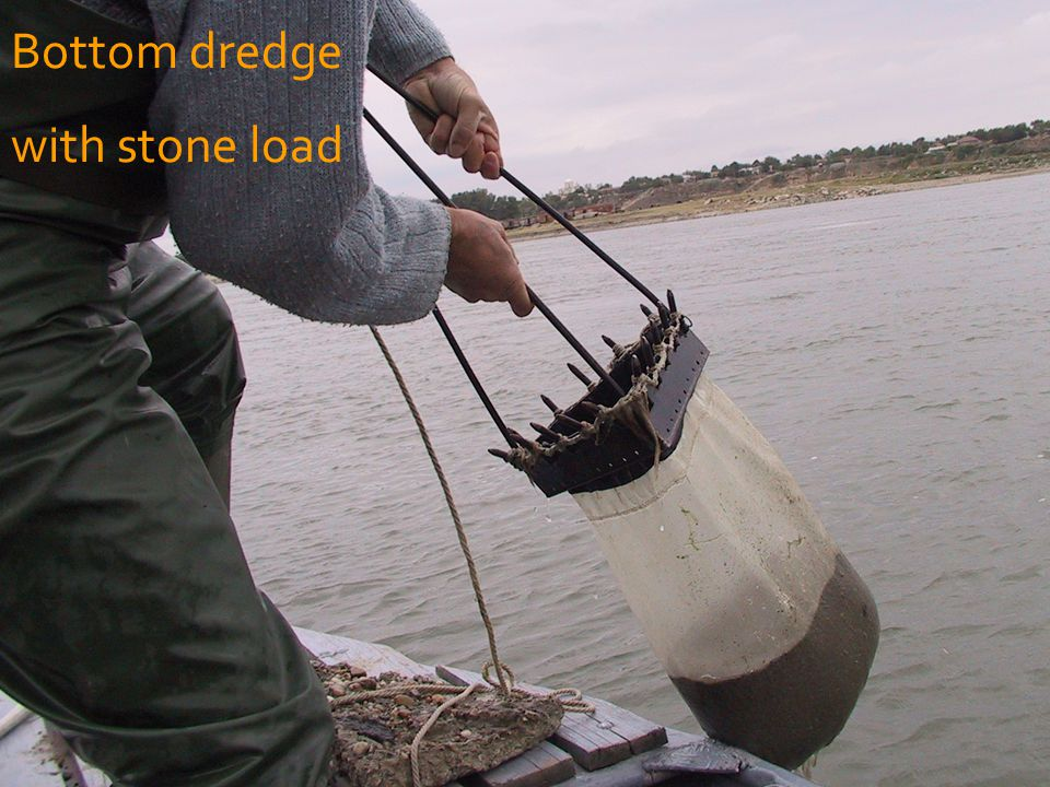 Bottom dredge with stone load