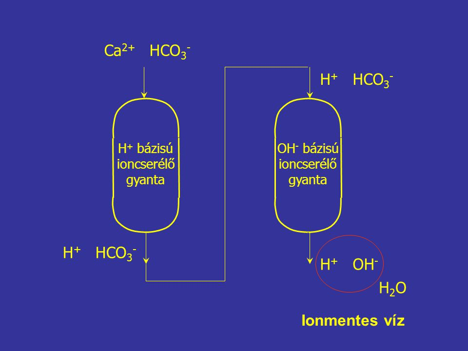 Ca2+ HCO3- H+ HCO3- H+ HCO3- H+ OH- H2O Ionmentes víz H+ bázisú