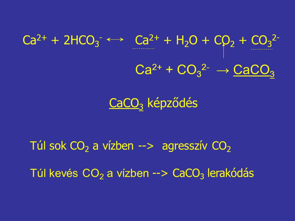 Ca2+ + CO32- → CaCO3 Ca2+ + 2HCO3- Ca2+ + H2O + CO2 + CO32-
