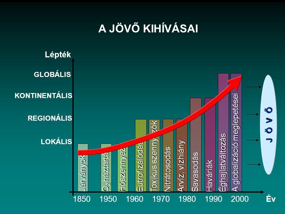 A JÖVŐ KIHÍVÁSAI Lépték A globalizáció meglepetései J Ö V Ő