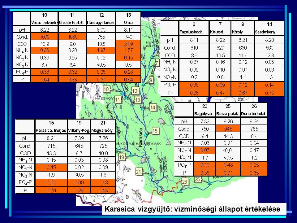 Karasica vízgyűjtő: vízminőségi állapot értékelése