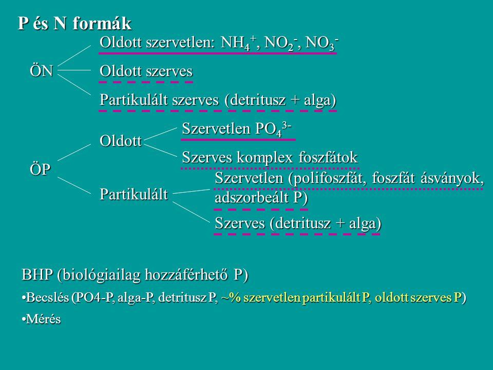 P és N formák ÖN Oldott szervetlen: NH4+, NO2-, NO3- Oldott szerves