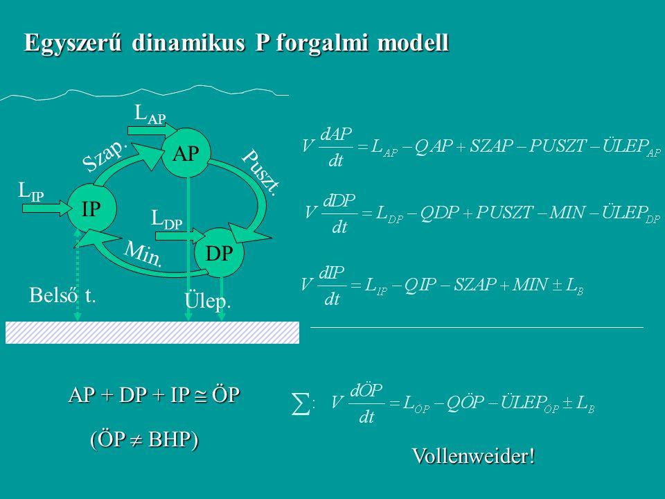 Egyszerű dinamikus P forgalmi modell