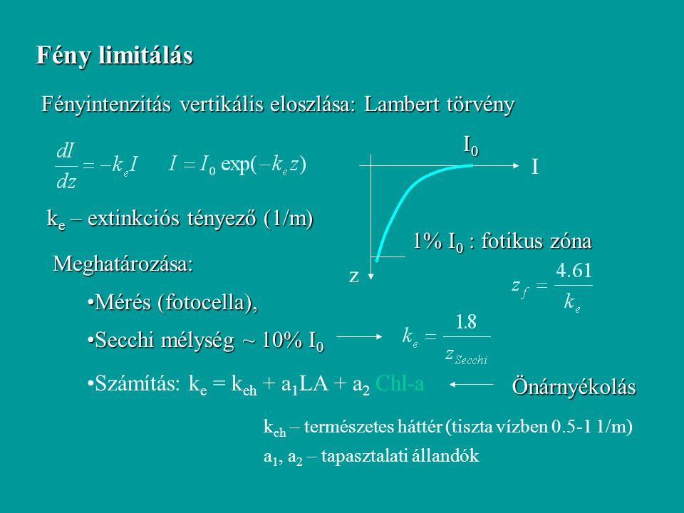 Fény limitálás Fényintenzitás vertikális eloszlása: Lambert törvény I0
