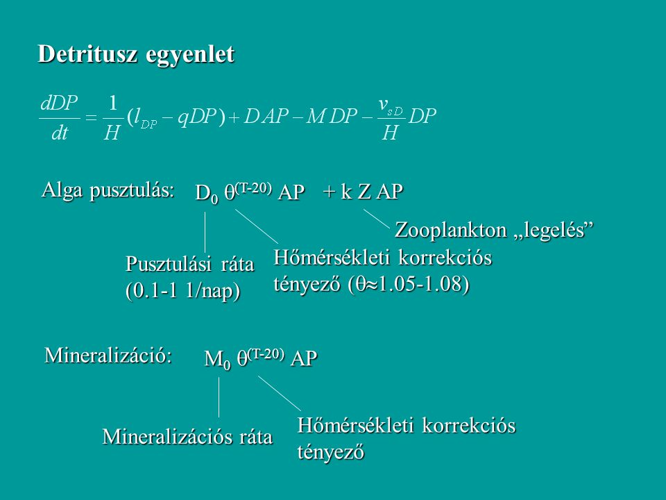 Detritusz egyenlet Alga pusztulás: D0 (T-20) AP + k Z AP