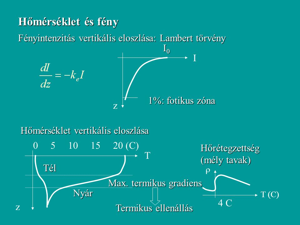 Hőmérséklet és fény Fényintenzitás vertikális eloszlása: Lambert törvény. z. I. I0. 1%: fotikus zóna.