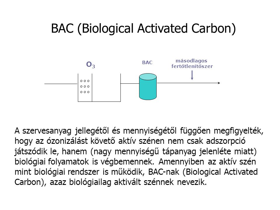 BAC (Biological Activated Carbon)