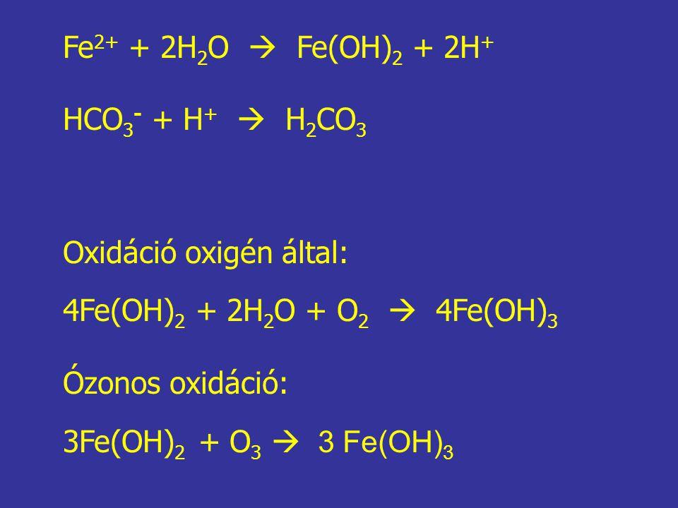 Fe2+ + 2H2O  Fe(OH)2 + 2H+ HCO3- + H+  H2CO3. Oxidáció oxigén által: 4Fe(OH)2 + 2H2O + O2  4Fe(OH)3.