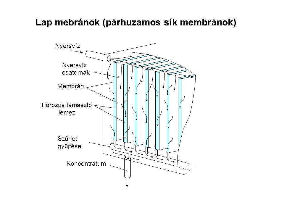 Porózus támasztó lemez
