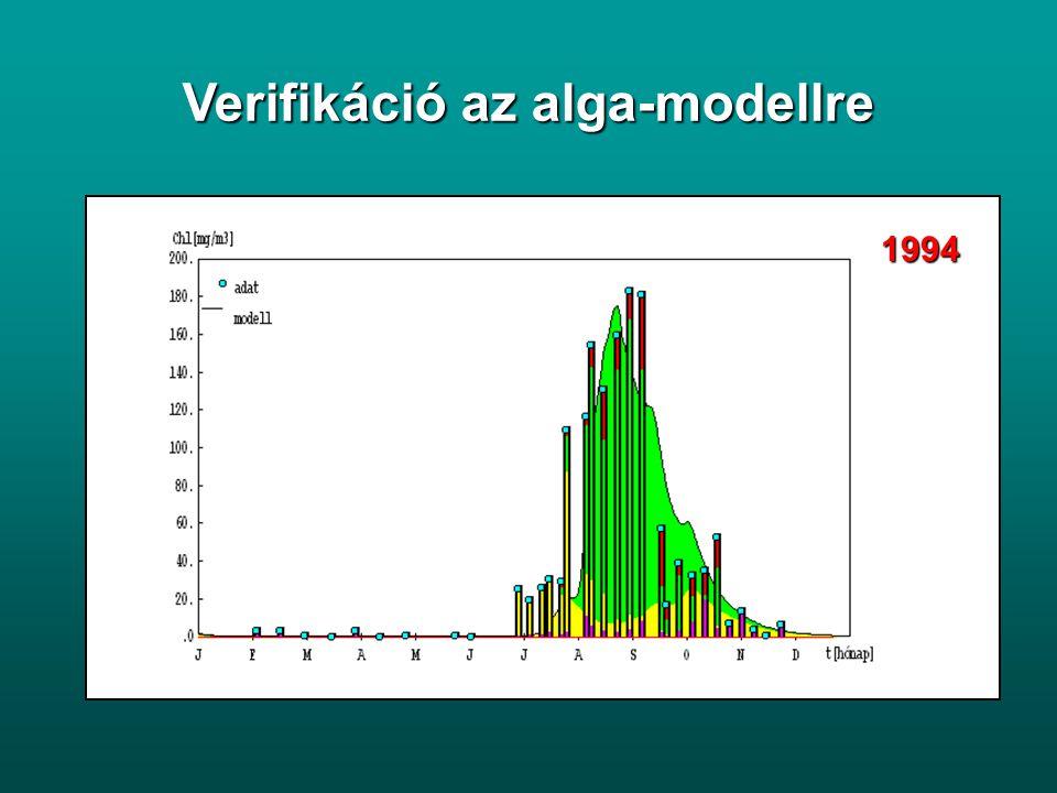 Verifikáció az alga-modellre
