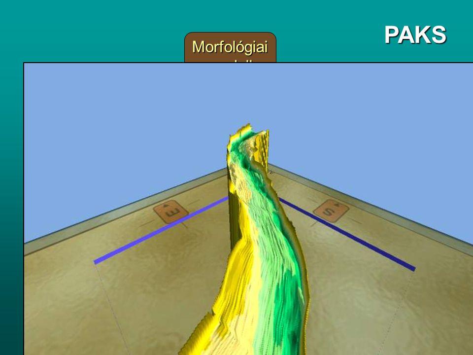 PAKS Morfológiai modell 2D Hidrodinamikai modell 2D Transzport modell
