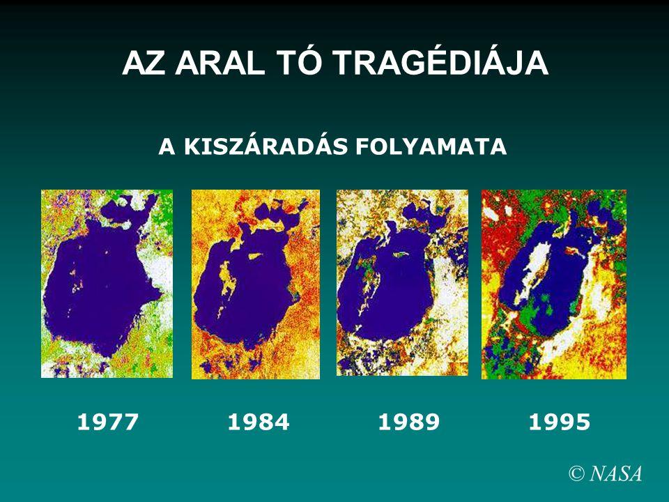 A KISZÁRADÁS FOLYAMATA