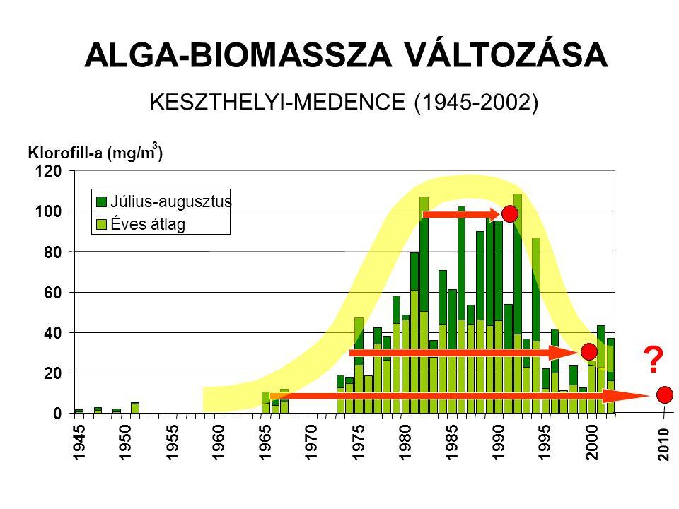 ALGA-BIOMASSZA VÁLTOZÁSA KESZTHELYI-MEDENCE (1945-2002)