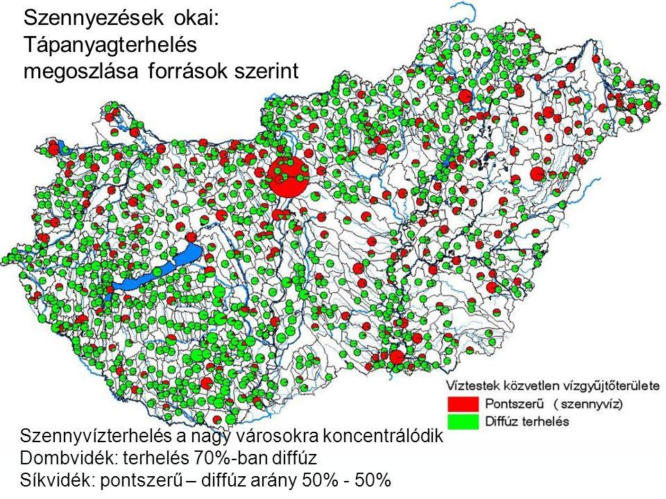 Szennyezések okai: Tápanyagterhelés megoszlása források szerint