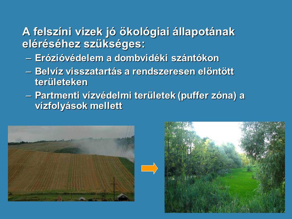 A felszíni vizek jó ökológiai állapotának eléréséhez szükséges: