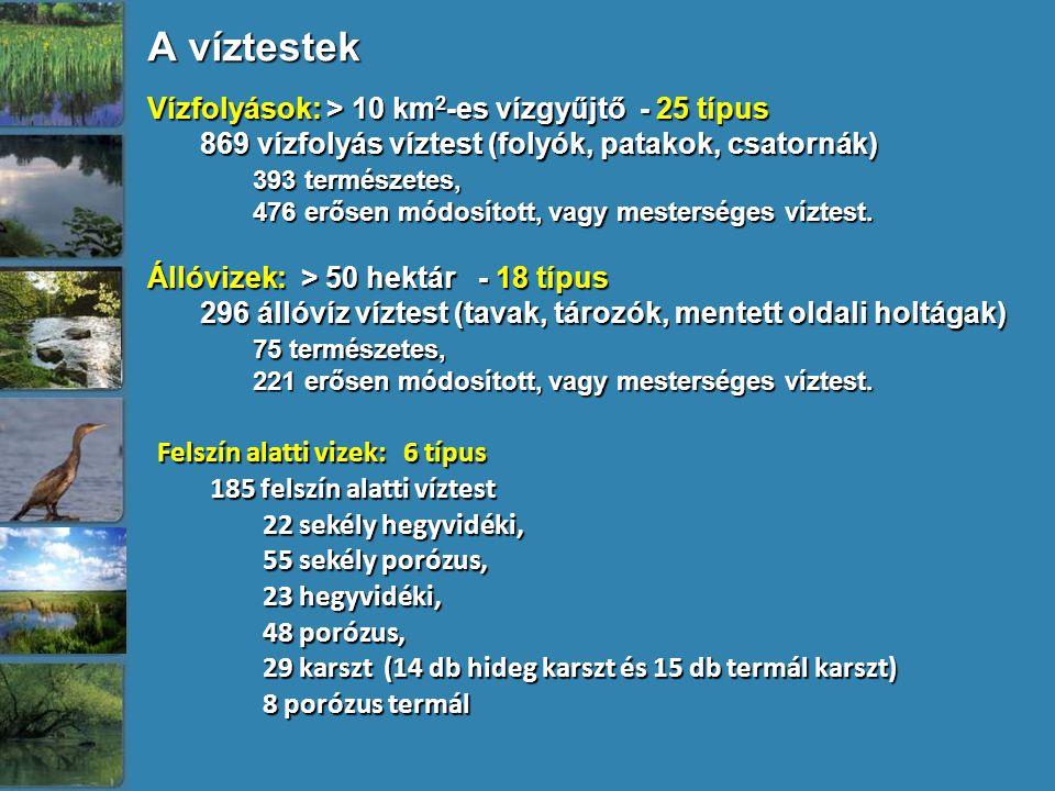 A víztestek Vízfolyások: > 10 km2-es vízgyűjtő - 25 típus