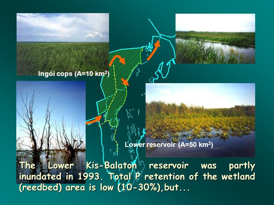 Ingói cops (A=10 km2) Lower reservoir (A=50 km2)