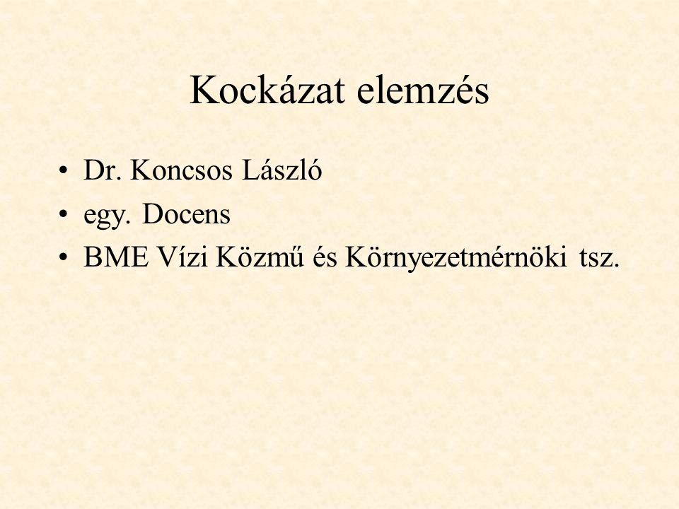 Kockázat elemzés Dr. Koncsos László egy. Docens