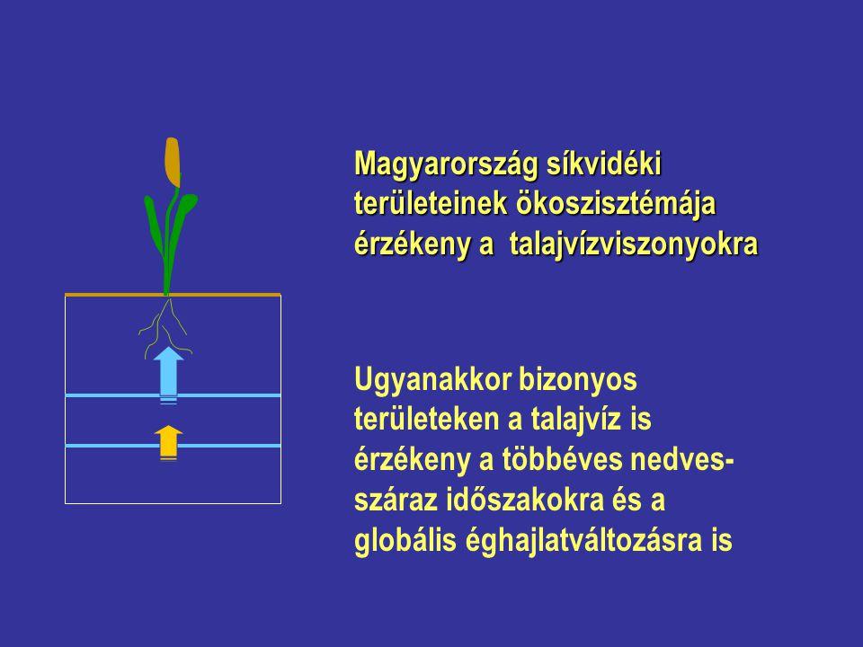 Magyarország síkvidéki területeinek ökoszisztémája érzékeny a talajvízviszonyokra